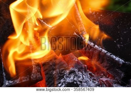 Close-up Burning Firewood In Fire, Black Coals. Fire Crackling In Fireplace. Comfort And Warmth From