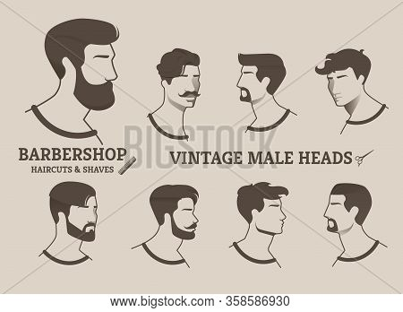 Barbershop Haircuts And Shaves Vintage Male Heads. Set Variants Hairstyles And Haircuts Popular Vint