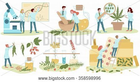 Homeopathy And Natural Alternative Medicine, Herbal Medical Treatment And Homeopaths Medics Set Of F