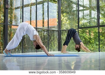 Two Women Doing Yoga In Relaxing Space Two Women Adho Mukha Hrdhvha Dog Looking Up