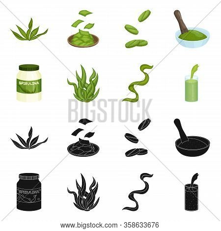 Isolated Object Of Protein And Sea Symbol. Set Of Protein And Natural Stock Vector Illustration.