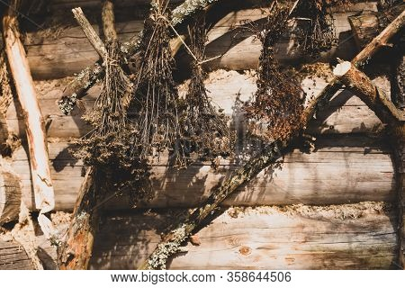 Dry Flowers Bouquet Hanging On A Wooden Wall Of The Old Forest House. Legend Fairy Tale Ethnic Pagan