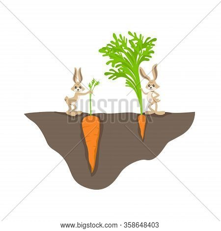 Two Funny Cartoon Rabbit With Small And