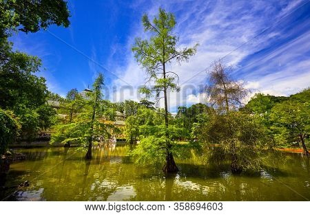 Park of Pleasant Retreat (Buen Retiro Park) in Madrid Spain. Picturesque landscape lake with trees in water, blue sky and white cloud. Famous landmark.