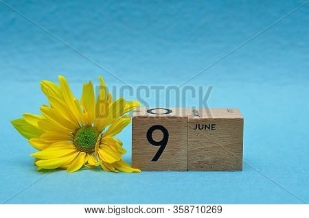 9 June On Wooden Blocks With A Yellow Aster On A Blue Background