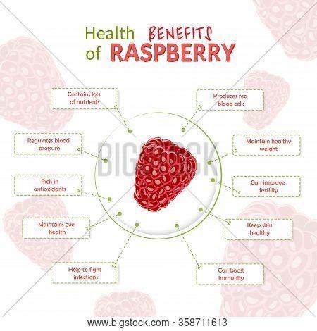 Health Benefits Of Raspberry. Raspberries Nutrients Infographic Template Vector Illustration. Fresh