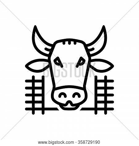 Black Line Icon For Cow-in-shed Cow Shed Farmyard Cattle Pet Breed Agriculture Pavilion Beef Animal