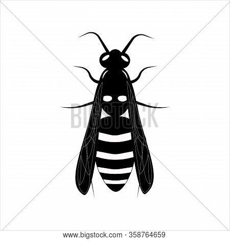 Yellow Illustration On White Backdrop. Honey Bee Vector Illustration. Botany Illustration. Honey Fly