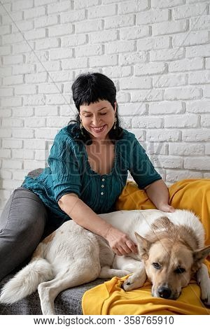 Stay Home. Pet Care. Middle Aged Woman Patting Her Shepherd Dog On The Sofa At Home