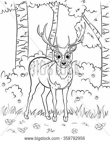 Coloring Page Outline Vector Photo Free Trial Bigstock