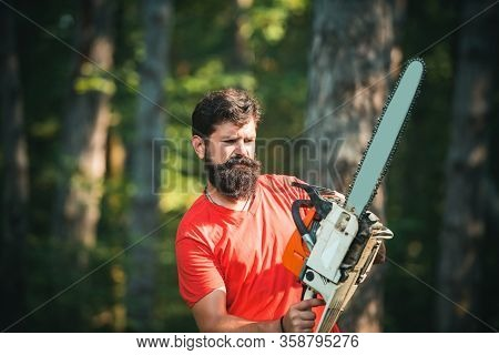Man Doing Mans Job. Logging. Lumberjack Concept. Woodworkers Lumberjack. Illegal Logging Continues T