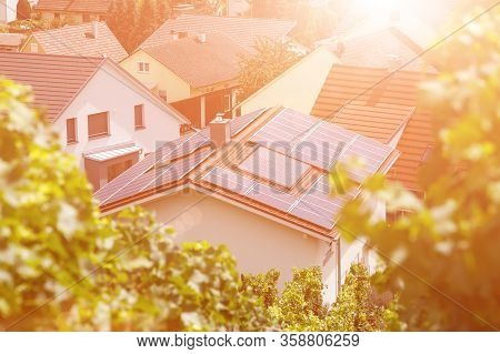 Solar Panels On The Tiled Roof Of The Building In The Sun. Top View Through Grape Leaves. Image For