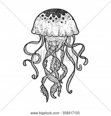 Jellyfish Sketch Engraving Vector Illustration. T-shirt Apparel Print Design. Scratch Board Imitatio