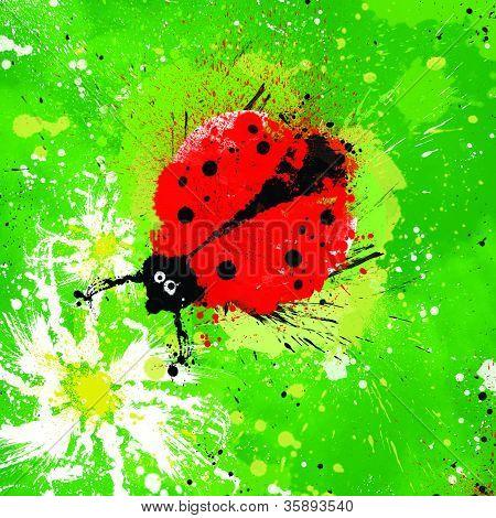 Ladybug  On A Camomile
