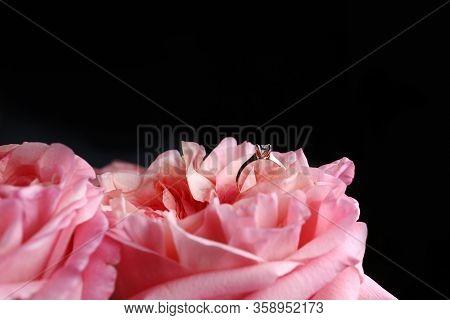 Gold Ring With Diamond. Diamond Wedding Rings On Rose Petals. Diamond Ring On Pink Rose. Selective F