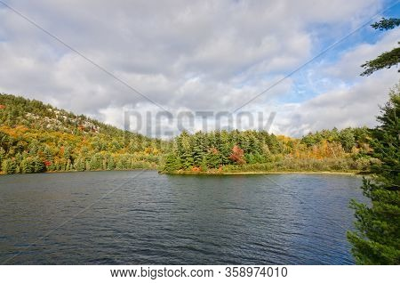 Forest Lake In Sunny Aurumn Day In Canada