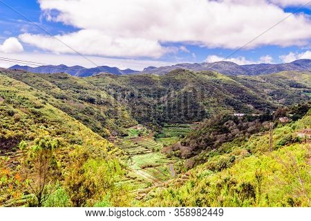 Beautiful Valley Full Of Plantations And Palm Trees Surrounded By Mountains On The Island Of La Gome