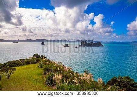 New Zealand, Pacific Ocean. Incredible clouds over the evening inflow. Flowering reeds grow along the sides of the path. Road to the Cathedral Cove. The concept of exotic, ecological and photo tourism