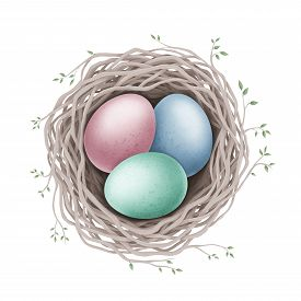 Easter Eggs In The Nest On A White Background. Digital Illustration