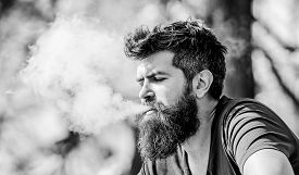Man Long Beard Relaxed With Smoking Habit. Man With Beard Breathe Out Smoke. Clouds Of Flavored Smok