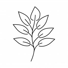 Isolated Object Of Leaf And Coffee Logo. Set Of Leaf And Plant Vector Icon For Stock.