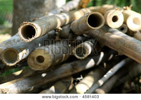 Bamboo Rounds