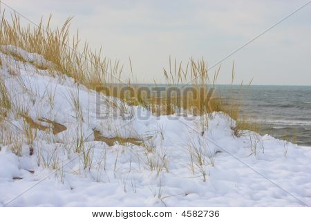 Jean Klock Park Dunes In The Winter