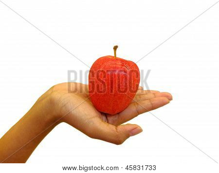 Female Hand Holding Red Apple
