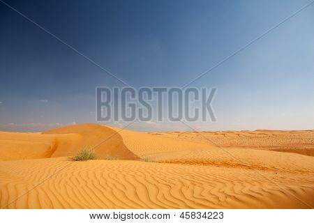 Pure Desert With Dunes And Bue Sky In Background