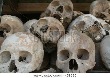 Killing Fields Skulls 3