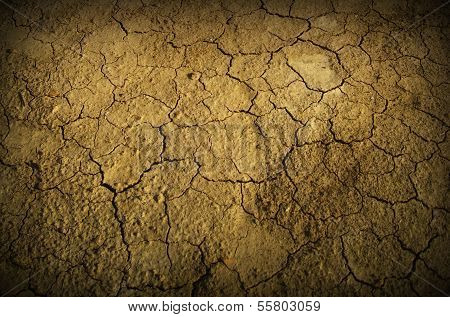 Desert Ground
