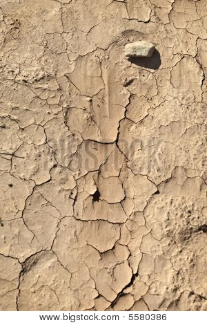 Dry Ground During Drought