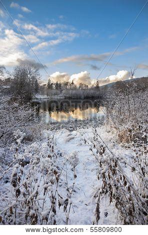 Winter Scene With Lake