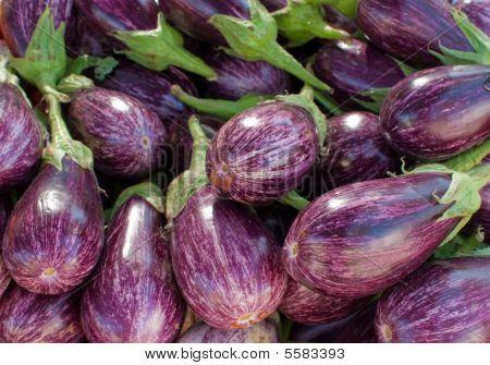 Aubergines On Market