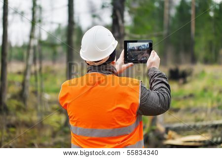 Forest Officer with tablet PC in destroyed forest