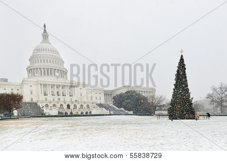 U.S. Capitol Building and Christmas Tree in snow - Washington DC, United States