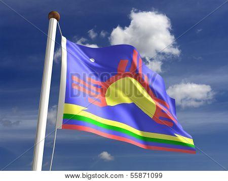 Roswell City Flag