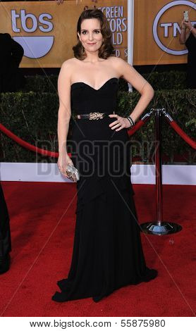 LOS ANGELES - JAN 27:  Tina Fey arrives to the SAG Awards 2013  on January 27, 2013 in Los Angeles, CA