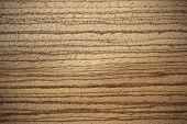 Wood surface zebrawood/zebrano (Microberlinia) - horizontal lines poster