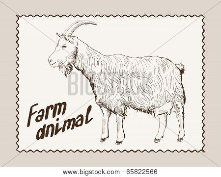 goat vector hand drawn