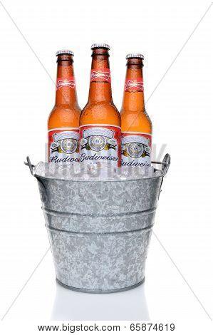 Budweiser Bottles In An Ice Bucket