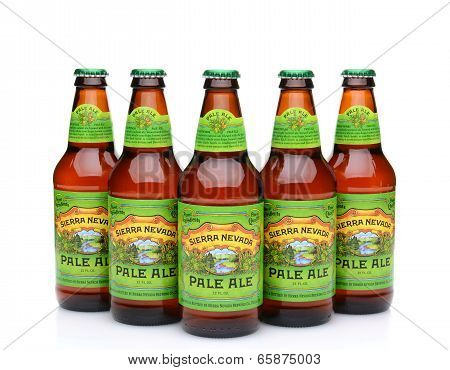 Five Bottles Of Sierra Nevada Pale Ale