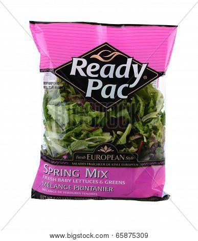 Ready Pac Spring Mix