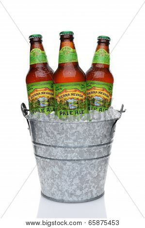 Sierra Nevada Pale Ale Bottles In An Ice Bucket