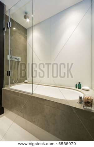 Large Luxury Bath With Shower Attachment And Marble Tiles