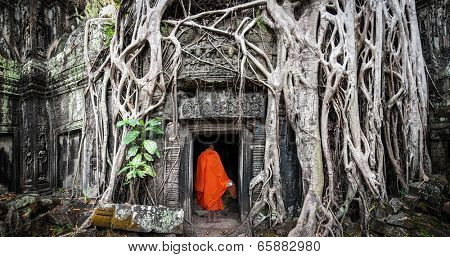 Monk in Angkor Wat Cambodia. Ta Prohm Khmer ancient Buddhist temple in jungle forest. Famous landmark, place of worship and popular tourist travel destination in Asia.