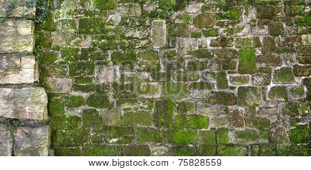 Mossy old natural stone wall