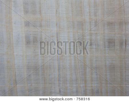 paper texture papyrus