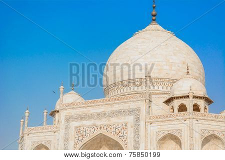 Dome of TajMahal