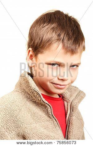Portrait of a cunning boy